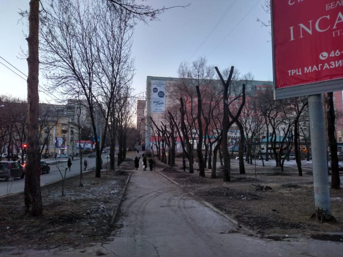 срочное фото на уссурийском бульваре хабаровск прицел, пятьдесят первый